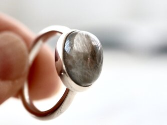 [ルチルの実]プラチナルチルクォーツ 針水晶の画像