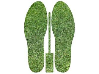 グラフィックインソール SOKO(サプライズ:シバフ)芝生・中敷・消臭・抗菌・芝生の画像