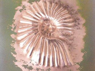 額付き銅板レリーフ アナゴードリセラス2の画像