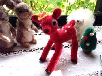 真っ赤な小鹿の画像