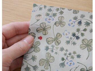 A4サイズ 包装紙/ラッピングペーパー 『クローバーとてんとう虫』30枚入りの画像