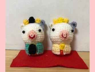 ひな祭りウシの編みぐるみの画像