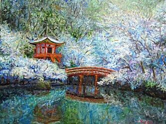 弁天島も雪化粧の画像