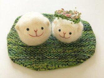 ラムキンちゃんのための芝生tweedマットの画像