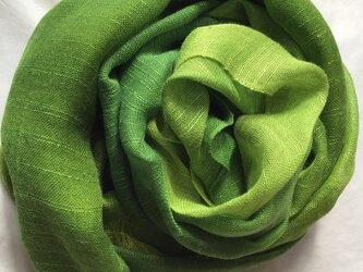 草木染め シルクストール 緑色 コブナグサ+藍 の画像