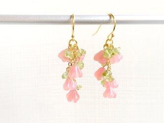 しだれ桜のピアス 天然石 ペリドット | 樹脂ピアス イヤリング 花 ピンク 春色 誕生石 8月の画像