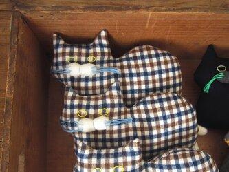 """"""" Stickitten"""" kitten loaf チェックの画像"""