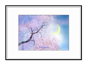 「東へ西へ~春が舞う~」 桜 月 ほっこり癒しのイラストA4サイズポスター No.769の画像