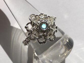 『 Wind flower ( SP- lab21' ) 』Ring by SV925の画像