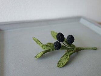 Olive ⅱの画像