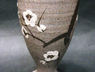 梅フリーカップの画像
