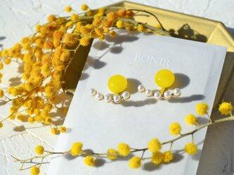 mimosa +bkc.pの画像