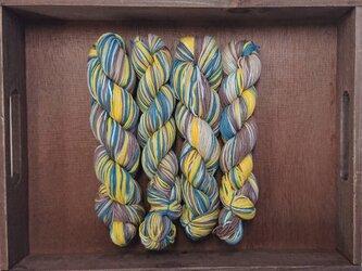 インダスからの贈り物【オリジナル段染め糸】(461) 1本の画像