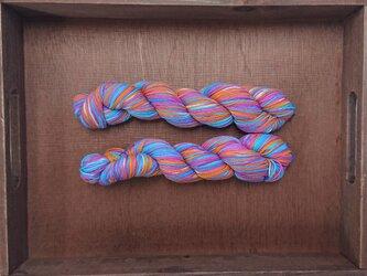 インダスからの贈り物【オリジナル段染め糸】(462) 1本の画像
