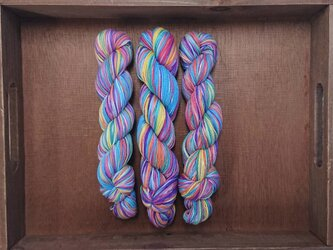 インダスからの贈り物【オリジナル段染め糸】(463) 1本の画像