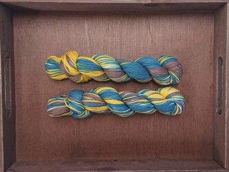 インダスからの贈り物【オリジナル段染め糸】(464) 1本の画像