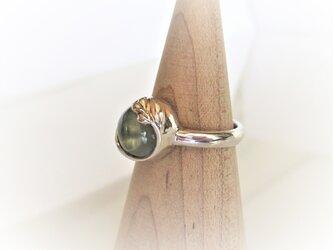 天然プレナイトと植物の指輪の画像
