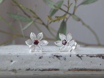 SV小花のピアス(ガーネット)の画像