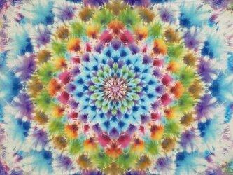 タイダイ染め タペストリー Hippies Dye最新作 HD13-48の画像