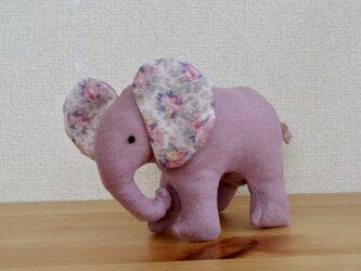 大きくなるんだゾウ•ぬいぐるみ(ピンク)の画像