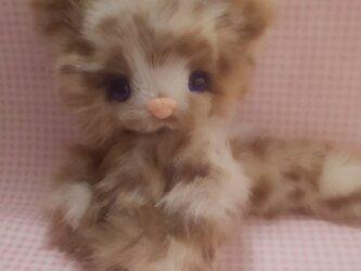 ふわふわぬいぐるみ☆子猫☆Baby cat**の画像