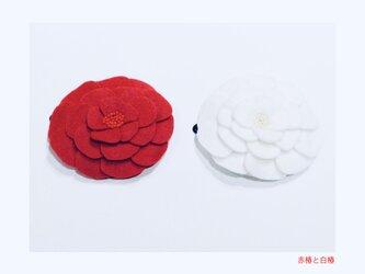 赤白椿スリーピンの画像