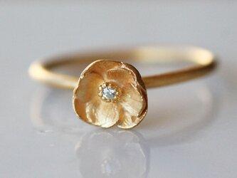 アネモネのリングの画像