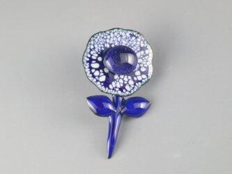 小さな藍花の画像