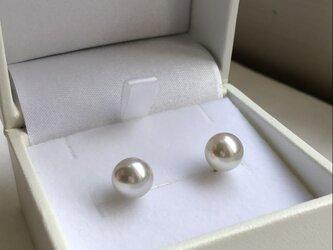 Pt あこや真珠 ナチュラルカラー ピアスの画像
