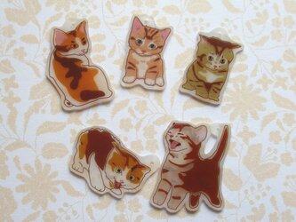 猫のちびチャームセットの画像