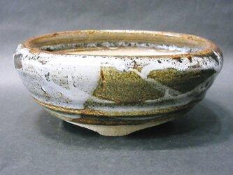 盆栽鉢(ジャカツ)の画像