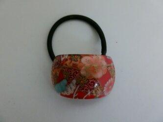 カラフル桐谷qualityのおしゃれカラーを添える姫菊ヘアポニー   桐谷美鶴の画像