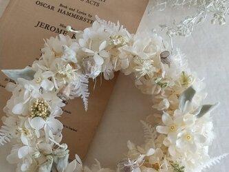ブルースターの春雪wreath (プリザーブドフラワードライフラワーグリーン アンティーク ギフト)の画像