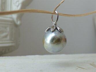 1点ものプラチナ 南洋真珠のトップの画像