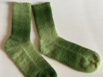 手編み靴下【Woolly Hugs イヤーソックス 05】の画像