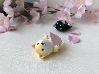 ヘソ天柴犬さん(茶色)の画像