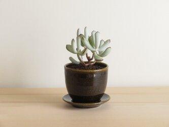 植木鉢 BG 受け皿付きの画像