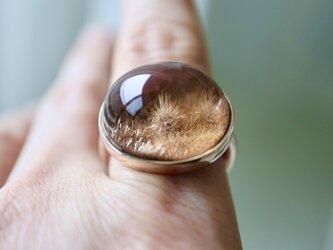 K10[深海庭園デュモルチェライトinクォーツ] ring の画像