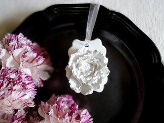 白い博物館 ■ アロマストーン ■ 植物標本 ラナンキュラス フリル咲きの画像