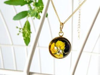 「小さな幸せ」の花言葉をもつイエロー・ミニビオラ(パンジー)を閉じ込めたネックレス(15mm)の画像