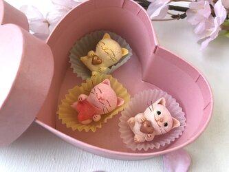 春のお菓子みたいな猫さんトリオの画像