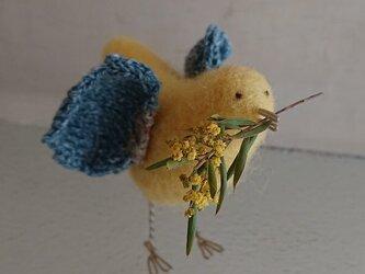 春告げ鳥(卵色)の画像
