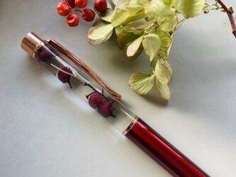 シンプルデザイン ハーバリウムボールペンの画像