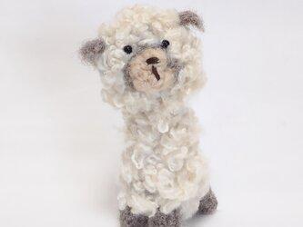 アルパカさんの編みぐるみ(アルパカ毛糸)の画像