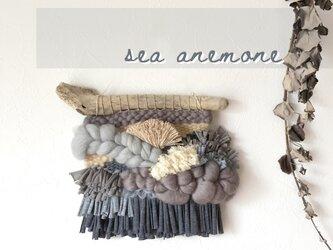 【一点もの】流木 ウィービングタペストリー 『Sea anemone.2』の画像