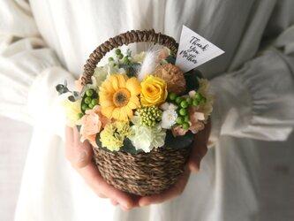 [ 母の日おすすめ] ガーベラとカーネーションの Flower basket (S)の画像
