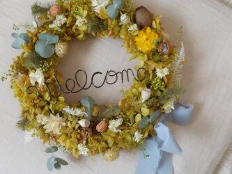 グリーンロゼカラーのwelcome wreath(グリーンドルチェ)リース プリザーブドフラワードライフラワーの画像