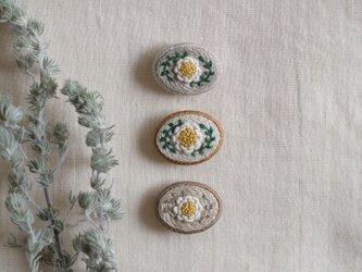 daisy grayの画像
