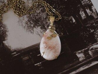 異国の桜 スコレサイトの画像