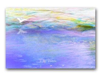 「詩情と叡知の複眼で描いたラブレター」鳥 ほっこり癒しのイラストポストカード2枚組 No.1324の画像